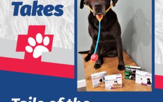 Jake's Take Online Pharmacies