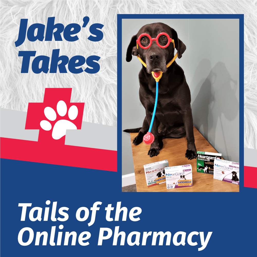Jake's Takes: Tails of the Online Pharmacy