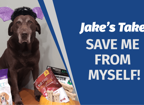 Jake's Take: Save Me from Myself!